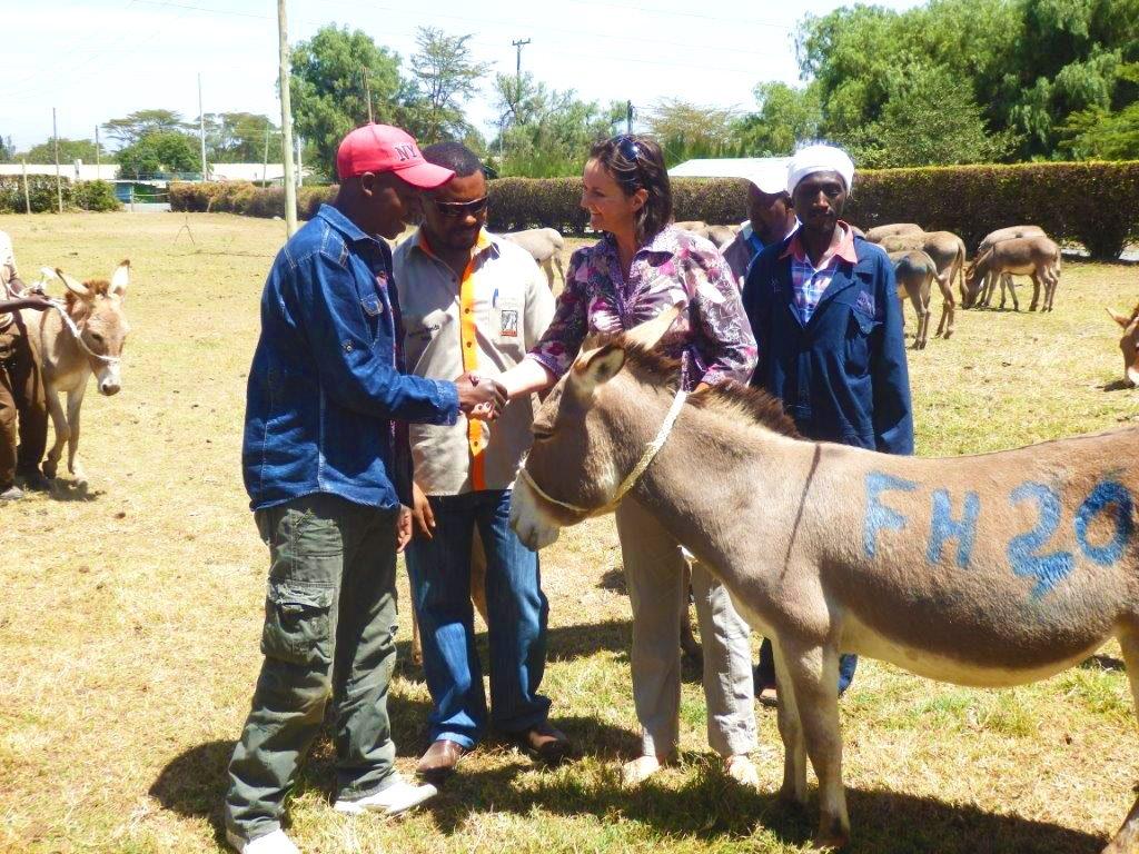 Donating Donkeys