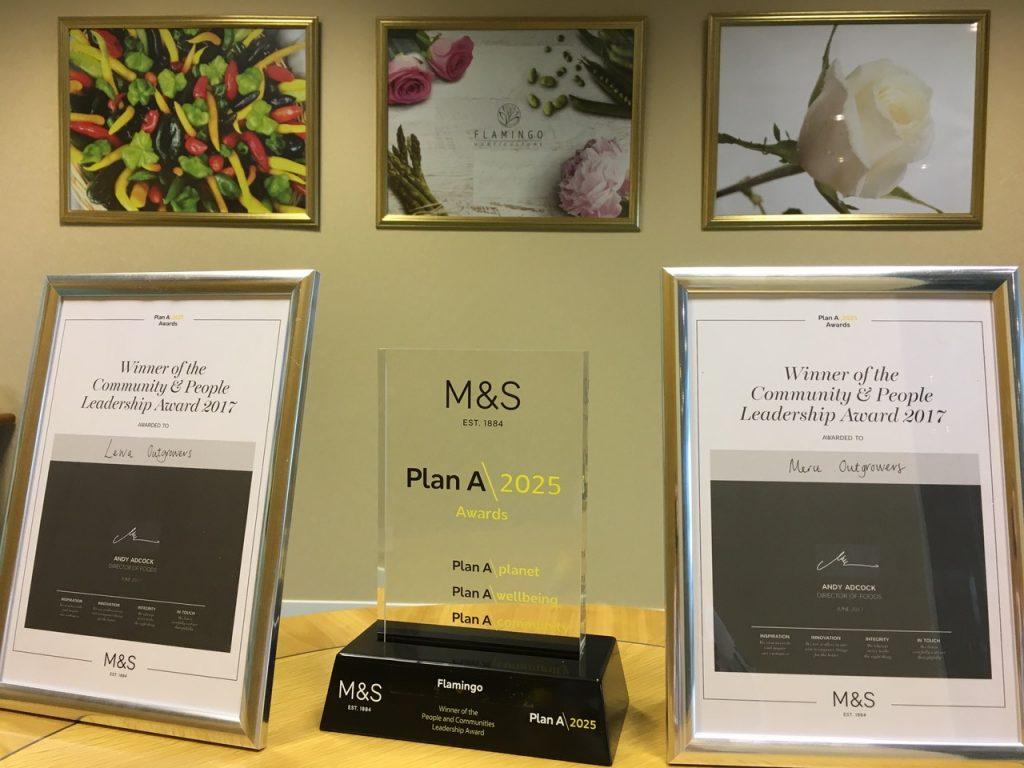 Flamingo receives Two Plan A Awards