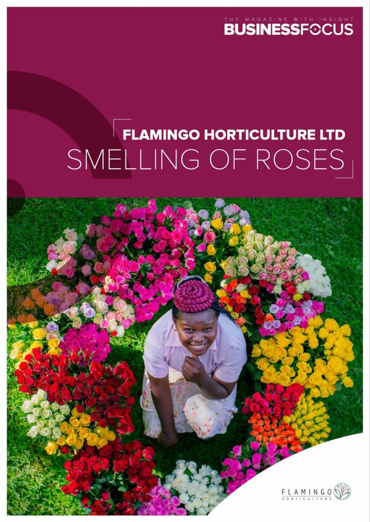 Business Focus article on Flamingo Horticulture