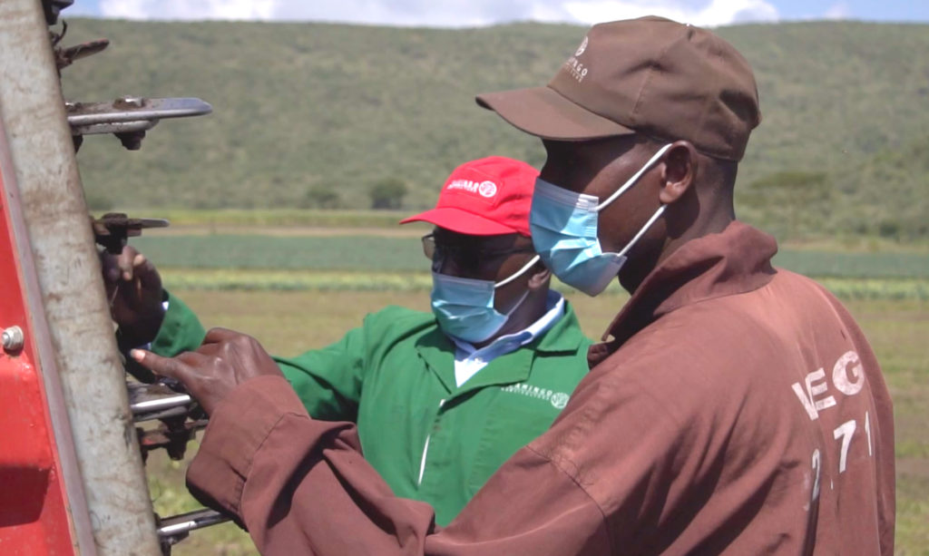 Flamingo Horticulture Kenya's response to the Covid-19 pandemic